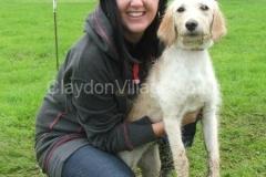 2012 Summer Event & Dog Show